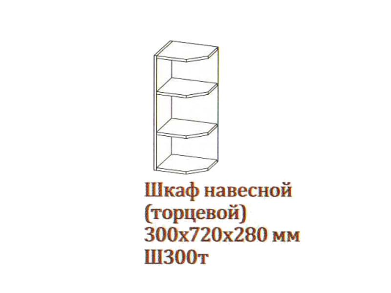 "Шкаф навесной 300-720 торцевой Ш300т-720 300х720х280 Серый  </p><font class=""price-kupimenya"">Цена 1566</font><input onclick=""product_add(29)"" type=""submit"" title=""В корзину"" value=""В корзину"" class=""buykupit"">"